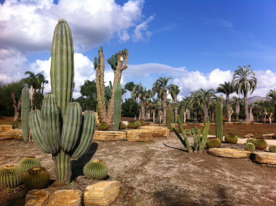 Parco dei continenti - Il mondo botanico di tutto il mondo nella Valle dell'Amaseno